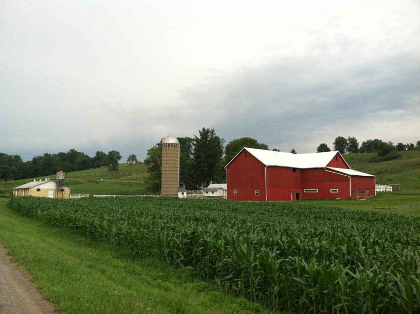 My Family's Farm in Sugarcreek, Ohio